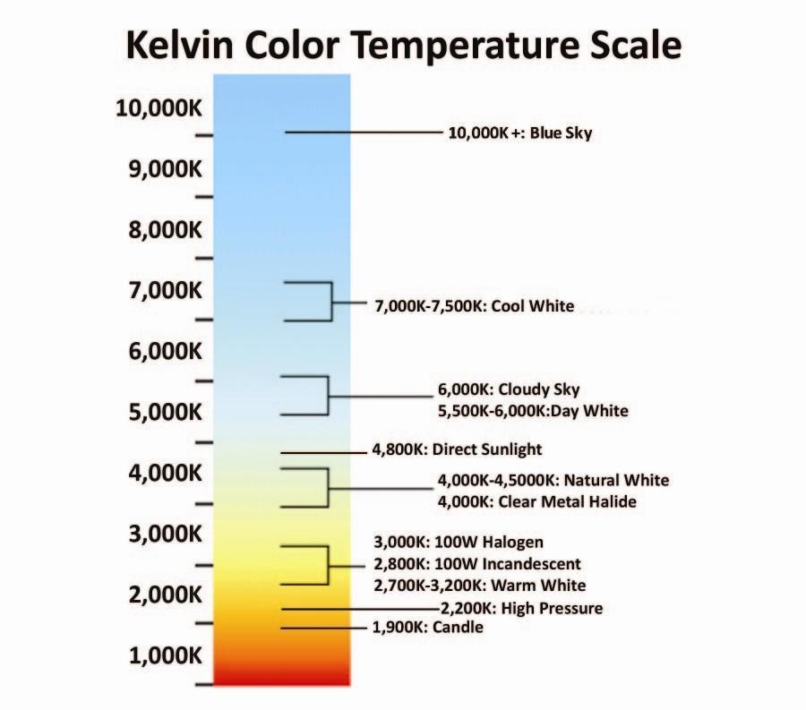 Corso di fotografia: temperatura, colore