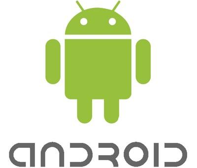 Google pensa allo shop per tablet Android