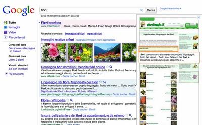 Google Anteprima Istantanea